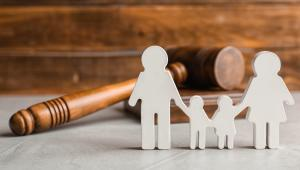 הקול נשאר במשפחה – על זכויות אדם ושוליות מרובה של הורים לילדים בסיכון